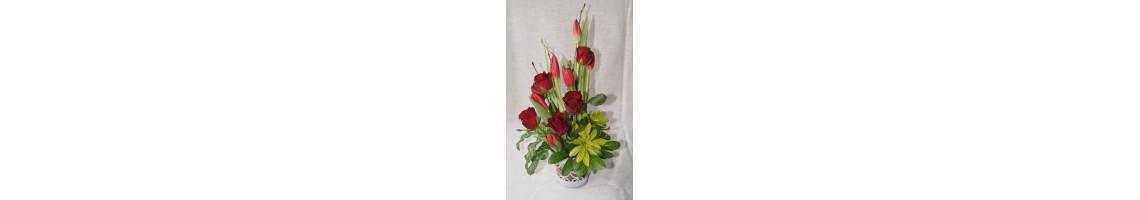 Rose & Tulip